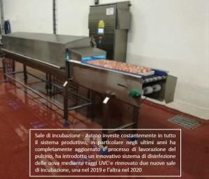 Sala_Incubazione_UVC