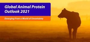Global animal protein